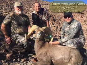 Dave York & Sons Cady Mtn 2017 173+ B&C Ram